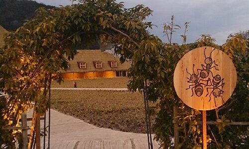 夕方でも混むクラブハリエのラコリーナ近江八幡の生どら焼きは最高!