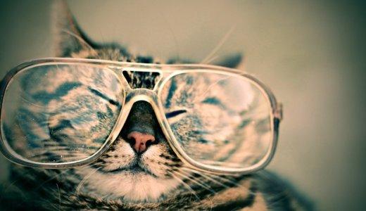 JINSのブルーカットメガネ(HEAVY USE)を1ヶ月試してみた感想とタイプ別のオススメ