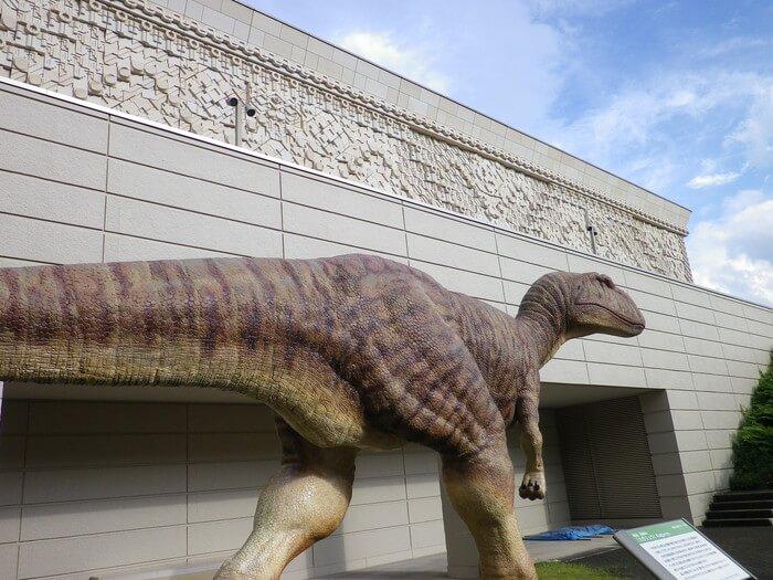 hikarimuseum6